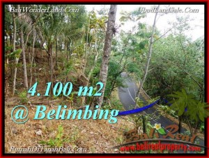 Beautiful 4,100 m2 LAND IN TABANAN BALI FOR SALE TJTB218