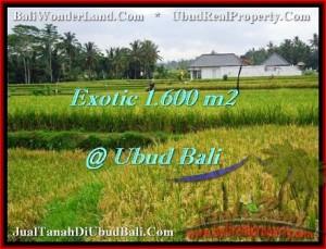 Affordable PROPERTY 1,600 m2 LAND IN Sentral Ubud FOR SALE TJUB487