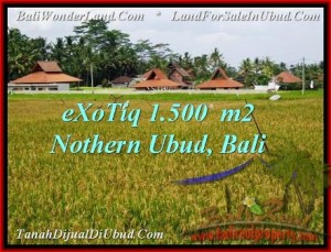 Exotic PROPERTY Sentral Ubud 1,500 m2 LAND FOR SALE TJUB488