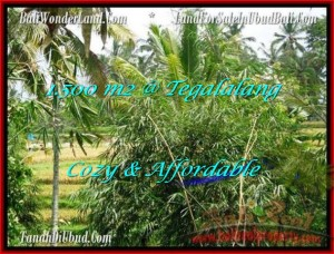 Exotic 1,500 m2 LAND SALE IN UBUD BALI TJUB489