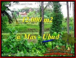 FOR SALE Magnificent 12,000 m2 LAND IN UBUD BALI TJUB492