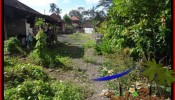 FOR SALE Affordable LAND IN Ubud Pejeng BALI TJUB504