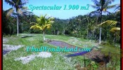 FOR SALE Affordable LAND IN Ubud Tegalalang BALI TJUB505