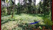Exotic PROPERTY LAND SALE IN UBUD TJUB506