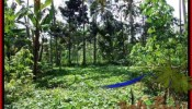 FOR SALE Magnificent PROPERTY LAND IN UBUD TJUB506