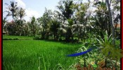 LAND SALE IN Sentral Ubud BALI TJUB507