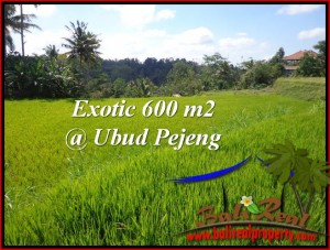 FOR SALE Affordable 600 m2 LAND IN UBUD TJUB513
