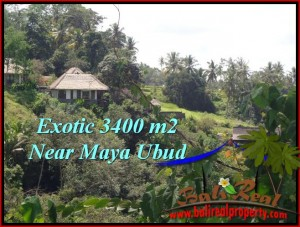 Exotic 3,400 m2 LAND FOR SALE IN UBUD BALI TJUB514