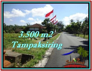 FOR SALE Exotic PROPERTY 3,500 m2 LAND IN UBUD BALI TJUB517