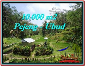 Beautiful PROPERTY 10,000 m2 LAND IN Ubud Tampak Siring FOR SALE TJUB519