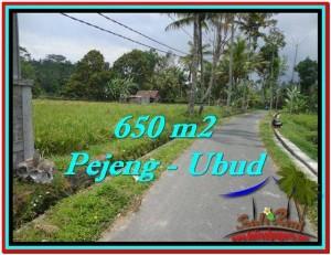 FOR SALE Magnificent LAND IN Ubud Tampak Siring BALI TJUB522