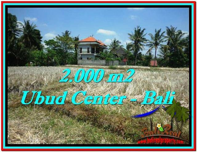 Exotic LAND SALE IN Sentral Ubud BALI TJUB524