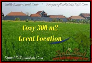 FOR SALE Beautiful PROPERTY 300 m2 LAND IN CANGGU TJCG186