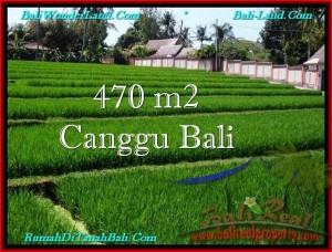 FOR SALE LAND IN CANGGU BALI TJCG187