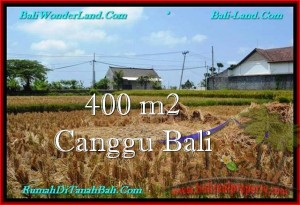Affordable LAND FOR SALE IN Canggu Pererenan TJCG188