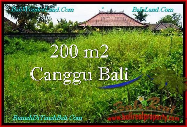 Exotic LAND IN Canggu Pererenan FOR SALE TJCG190