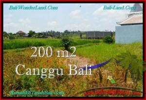 Exotic PROPERTY LAND FOR SALE IN Canggu Pererenan BALI TJCG191