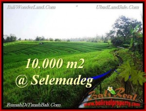 Magnificent 10,000 m2 LAND IN TABANAN BALI FOR SALE TJTB217