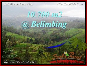 Affordable PROPERTY 10,700 m2 LAND SALE IN TABANAN BALI TJTB219