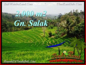 FOR SALE Exotic PROPERTY 2,000 m2 LAND IN TABANAN BALI TJTB220