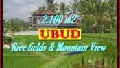 Exotic 2,100 m2 LAND IN UBUD BALI FOR SALE TJUB423