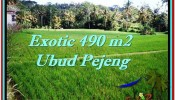 Exotic PROPERTY LAND SALE IN UBUD TJUB512