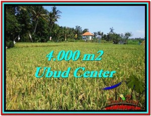 FOR SALE 4,000 m2 LAND IN UBUD TJUB527