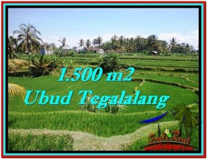 Affordable 1,500 m2 LAND FOR SALE IN UBUD BALI TJUB528