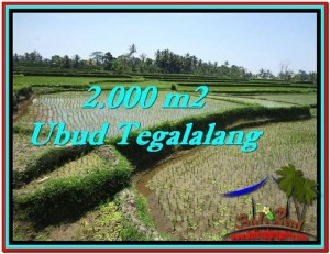Exotic 2,000 m2 LAND IN UBUD BALI FOR SALE TJUB529