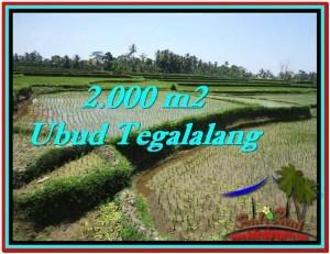 Exotic 2,000 m2 LAND IN UBUD BALI FOR SALE TJUB529