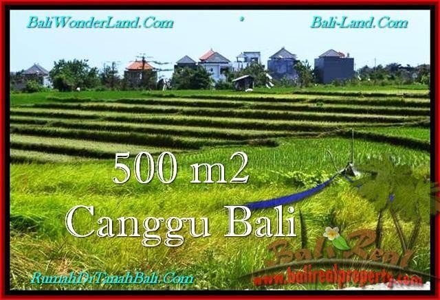 Beautiful LAND SALE IN Canggu Brawa TJCG192