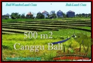 Affordable PROPERTY LAND IN Canggu Brawa BALI FOR SALE TJCG192
