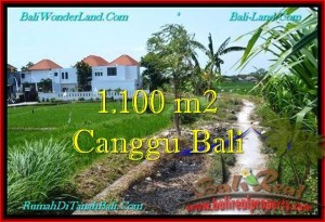 Magnificent PROPERTY LAND IN Canggu Brawa BALI FOR SALE TJCG193