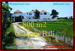 800 m2 LAND SALE IN Canggu Brawa BALI TJCG194