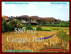Magnificent 580 m2 LAND FOR SALE IN CANGGU TJCG197