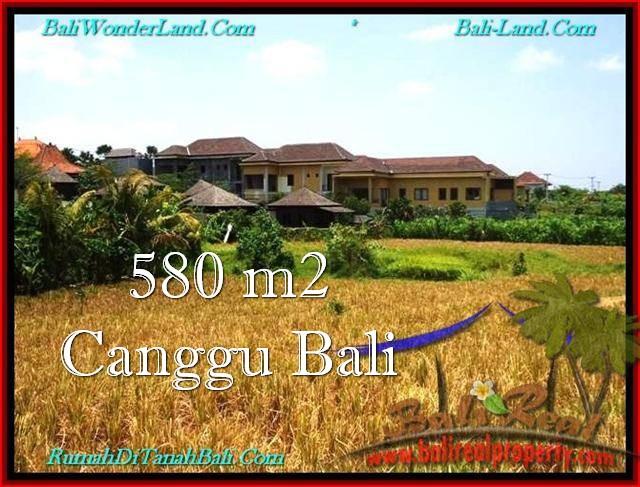 580 m2 LAND SALE IN Canggu Pererenan BALI TJCG197