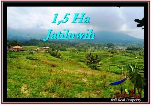 FOR SALE Affordable 15,000 m2 LAND IN TABANAN TJTB225