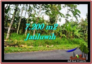 FOR SALE Affordable 7,200 m2 LAND IN TABANAN TJTB226