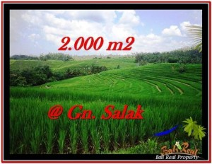 Exotic 2,000 m2 LAND FOR SALE IN TABANAN BALI TJTB227