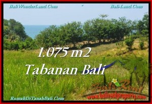 Magnificent 1,075 m2 LAND SALE IN TABANAN BALI TJTB230