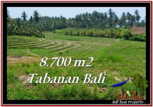 Exotic PROPERTY 8,700 m2 LAND IN Tabanan Selemadeg FOR SALE TJTB233