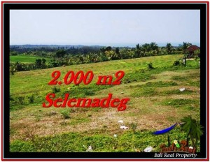 Exotic 2,000 m2 LAND FOR SALE IN TABANAN BALI TJTB228