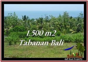 LAND IN Tabanan Selemadeg BALI FOR SALE TJTB234