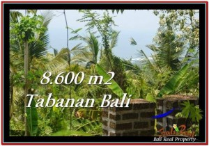 Beautiful PROPERTY TABANAN LAND FOR SALE TJTB235