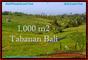 Beautiful PROPERTY TABANAN LAND FOR SALE TJTB237