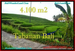 FOR SALE Affordable 4,100 m2 LAND IN TABANAN TJTB239