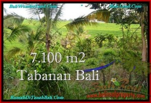 Magnificent 7,100 m2 LAND IN TABANAN BALI FOR SALE TJTB240