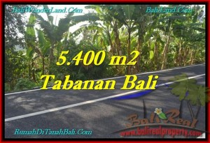 Magnificent LAND SALE IN Tabanan Selemadeg BALI TJTB241