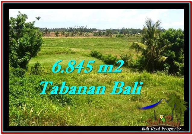 TABANAN 6,845 m2 LAND FOR SALE TJTB245