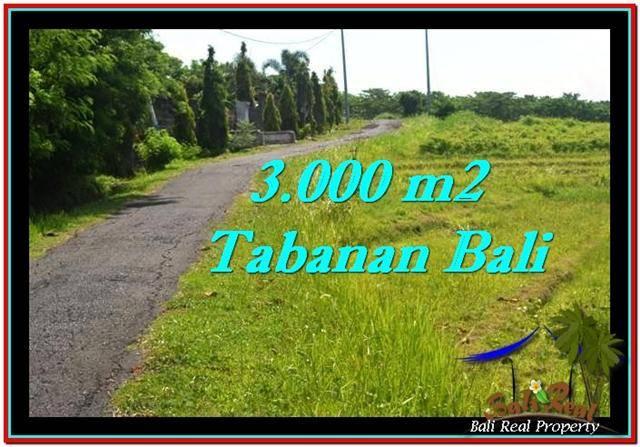 Affordable 3,000 m2 LAND SALE IN TABANAN TJTB246